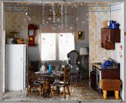Food and Water damage cleaning services