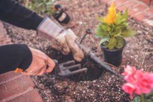 Gardening-Service