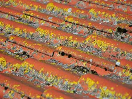 dirty roof tiles
