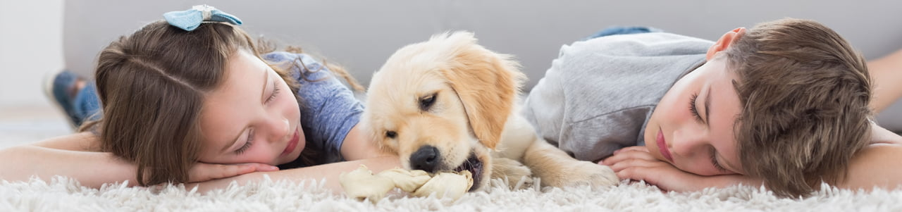 children and puppy laying on clean rug