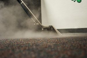 Steam Cleaning of carpet