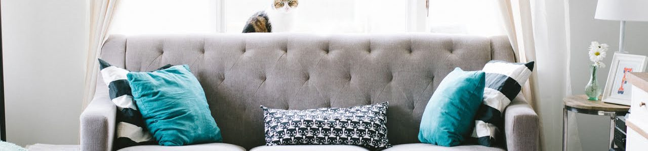 Upholstery & Curtain Cleaning Adelaide